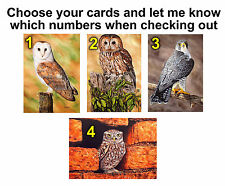 Birds of Prey Blank Greeting Note Cards, All Occasions Cards Artist Paintings
