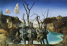 "SALVADOR DALI Surrealism Poster or Canvas Print ""Swans Reflecting Elephants"""