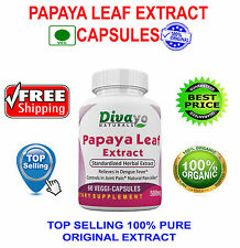 Papaya Leaf Standardized Extract 500 mg Capsule for Herbal Dietary Supplement