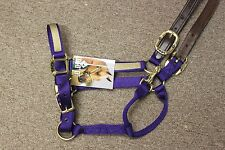 NEW BigD Nylon Overlay Halter w/Leather Crown - Pony, Med Horse, Lg Horse