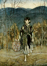 English Fairy Tales Arthur Rackham repro glossy Photo Print Catskin
