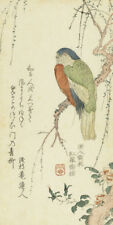 Parrot in a Plum Tree by Kitao Shigemasa Japanese Woodblock