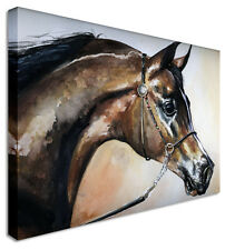 Large Brown Horse Head Canvas Pictures Wall Art Prints