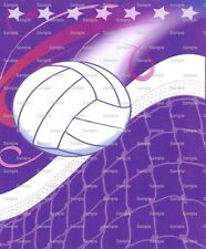 Volleyball Birthday ~ Frosting Sheet Cake Topper ~ Edible Image ~ D3099