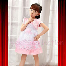 New Embroidery Flower Girl Wedding Pageant Party Formal Dress Age 12M 18M 2T 3T
