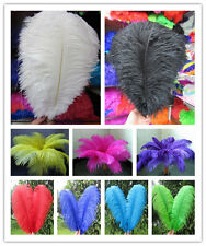 Wholesale 10-200pcs High Quality Natural OSTRICH FEATHERS 6-28 inch/15-70cm