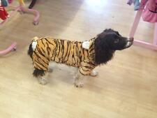 Big Dog Fancy Dress Onesie Costume Clothes Outfit TIGER Spaniel Labrador Staffy