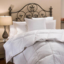 Four Season 1200TC Egyptian Cotton Cover Goose-Down Alternative Comforter