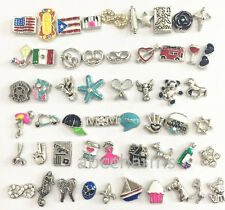 (SALE) 10 pieces floating charms lot for living charm locket you pick style #3