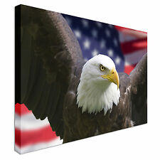 Bald eagle with American flag Canvas Art Affordable Wall Print Great Value