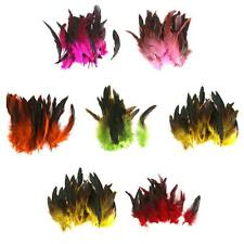 Beautiful 50 PCS Dyeing Rooster Feathers 12-18cm / 4-7inch DIY Craft Feathers