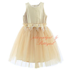 Toddlers Flowers Lace Girl Dress Princess Birthday Party Wedding Pageant Dresses