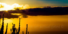 Panoramic Sunset Skyhigh Australia - Choose Canvas Print, Poster or Decal