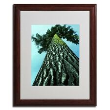 Kurt Shafer 'A Tree of Life' Framed Matted Wall Art. Delivery is Free