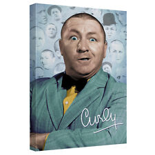 THREE STOOGES CURLY HEADS CANVAS WALL ART