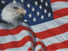 Cross stitch chart, Pattern, United States, USA, Flag Stars, Stripes, Bald Eagle