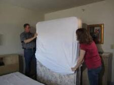 Dust Mite Bed Bug Mattress Encasement Allerzip Smooth:Waterproof-Bedding