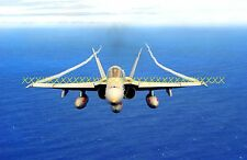 F-18 Mighty Shrikes Strike Fighter Squadron VFA-94 Military Color Photo USN F 18