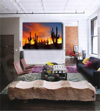 Arizona Sonoran Desert at Sunset Cactus Art Canvas Poster Print Home Wall Decor
