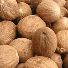 Whole Nutmeg High Quality, Organic Herbs & Spices Free Shipping 50g 100g