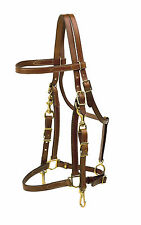 Tory Leather Halter Bridle Combo Trail Bridle - Horse, Cob, Oversize.All Colors