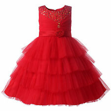Flower Girl Beaded Layered Tulle Party Dress Princess Wedding Bridesmaid Pageant