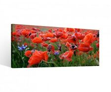 Canvas 1Tlg Flowers Meadow Poppies red Flower Canvas Picture picture 9P513