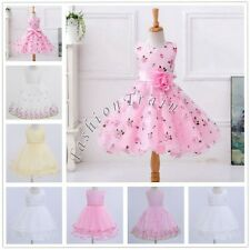Summer Flower Girl Princess Pageant Wedding Birthday Party Bridesmaid Kid Dress