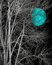 Black White Teal Wall Art, Tree Moon Home Decor Wall Art Matted Picture