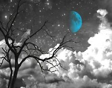 Black White Blue Wall Art, Bird On Tree Branch, Moon, Bedroom Home Wall Picture