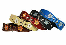"Genuine Leather Pet Collar Studs Blink Crystal Diamante 8""-10"" neck Puppies"