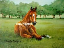 CELEBRATE HORSES Blank Note Cards MORE SELECT BREEDS signed by artist can frame