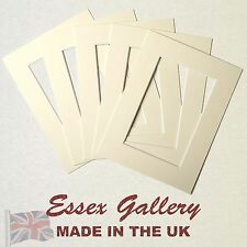 IVORY / CREAM picture and photo mounts