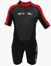 Animal AMP Kids Shorty Summer Wetsuit from 3yrs to 14+, Black Red/Blue. 32606