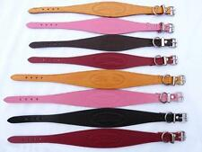 Greyhound Lurcher Whippet Small Large Dog Collars All Sizes Colours From £5.99
