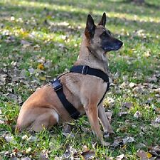 2-Inch Polyweb Tracking Harness for Dogs