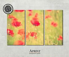 Wall Art Canvas Picture Print - Poppy Flowers - ready to hang 3 panel canvas