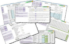 Childminding Accounts Book/Spreadsheet (Accounting / Bookkeeping)