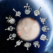 Chic Fashion 925 Sterling Silver 12 Constellations Zodiac Sign Pendants New