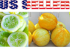 30+ ORGANIC Lemon Cucumber Seeds Heirloom NON-GMO Crispy Sweet Fragrant Yellow