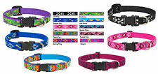 Lupine Collar for Small Dogs - 1/2 in x 8-12 in - Adjustable - perfect collar