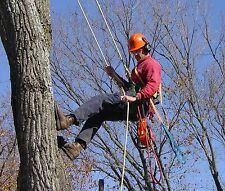 Tree Surgeon Starter Climbing Kit, For Arborists, Tree Surgery, Tree Climbing
