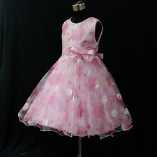 P3211 Pinks Christening Princess Wedding Party Flowers Girls Dresses AGE 3 to 8Y