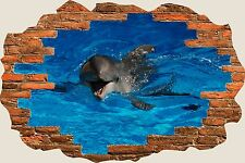 3D Hole in Wall Smiling Dolphin View Wall Stickers Mural Art Decal Wallpaper S47