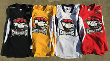 Reebok Edge Charlotte Checkers Pro Stock Practice Jerseys