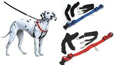 Sporn Halter for Dogs - walker better control & manageability - highest Quality