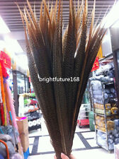 10-100 pcs beautiful natural golden pheasant tail feathers 6-26 inch / 15-65 cm