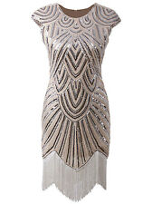 1920's Flapper Dress Great Gatsby Charleston Abbey Sequin Party Fancy Costume