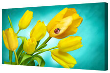 Vivid Yellow Tulip Flowers LARGE Floral Box Framed Canvas Art Picture Print Teal