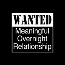 Tshirt Wanted Meaningful Overnight Relationship One Night Stand Sex Party Drink